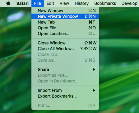 opening new private window using safari menu