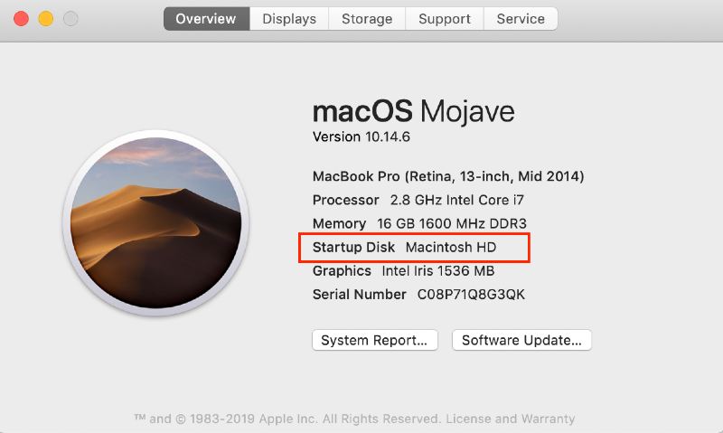 check type of drive on mac in about this mac settings