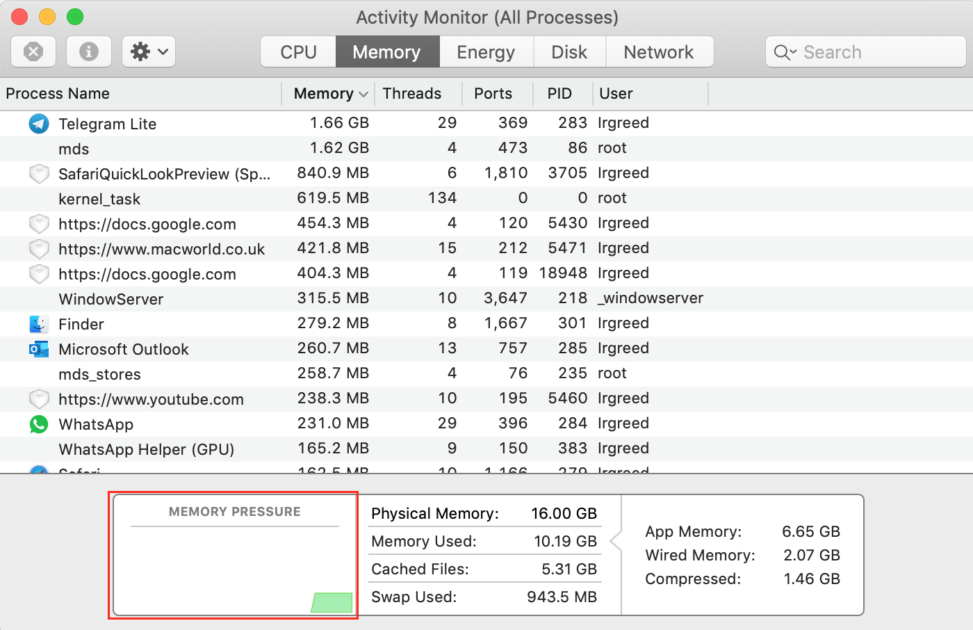 check efficiency of RAM usage in activity monitor memory section