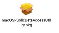 macos Developer Beta Access Utility pkg icon