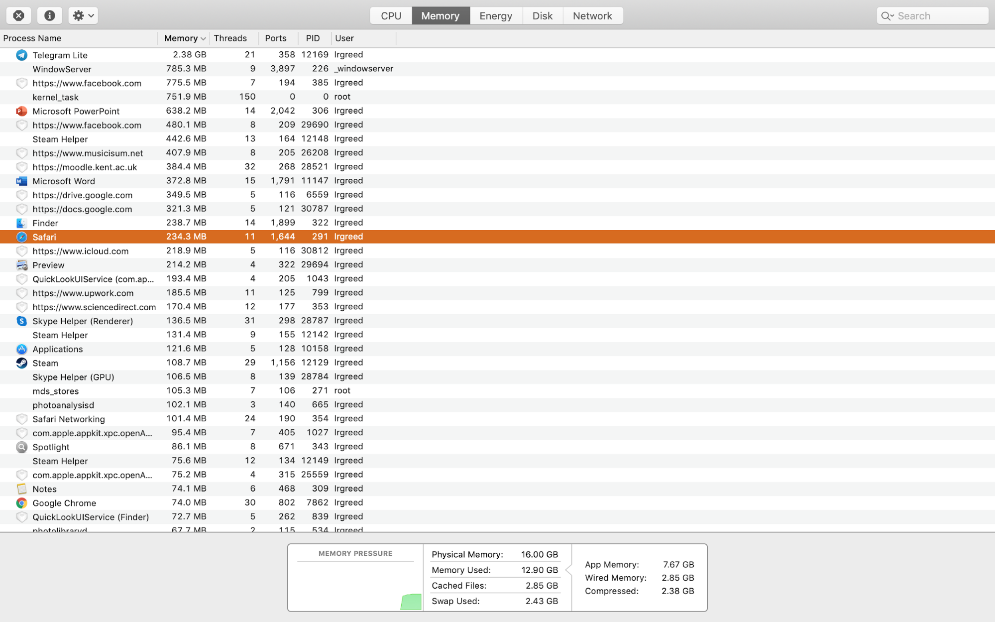 processes in the Memory tab in Activity Monitor on MacBook