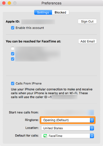 a facetime preferences window with the apple ID and the contacts blurred out